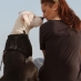 4 Tips For Basic Animal Communication
