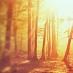 Wayne Dyer On The 3 Stages Of Spiritual Awakening