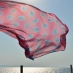 Pink Scarf Flying Over the ocean