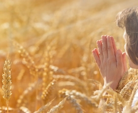A woman praying in a cornfield