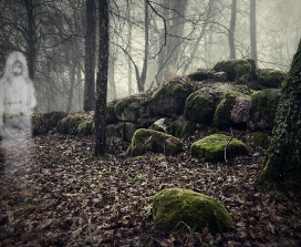 A ghost in a wood