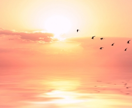 Abraham-Hicks Shares 3 Steps To Manifest Whatever You Want