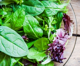 7 Easy Summer Salad Recipes
