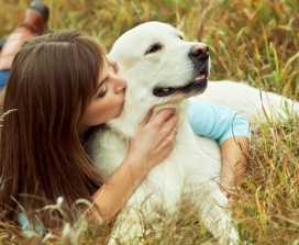 Dog Or Cat Owners: Discover The Single Most Powerful Medicine Available
