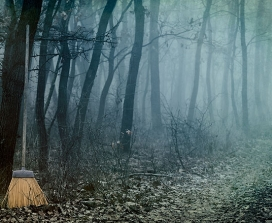 A broom in a forest at night