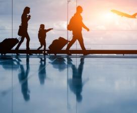 Airport terminal family
