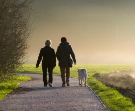 dog walking couple