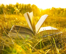 A book lying open in a sunny field