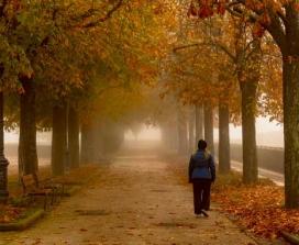Woman walking in foggy park