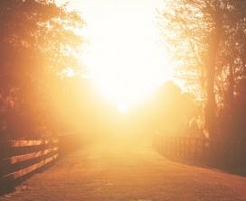 Sunlight road