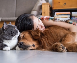 A woman, a cat and a dog