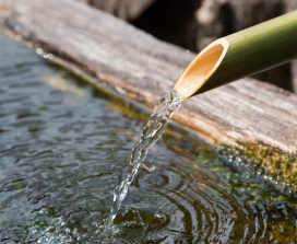 water out of bamboo