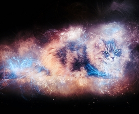 A cat appearing in a space nebula