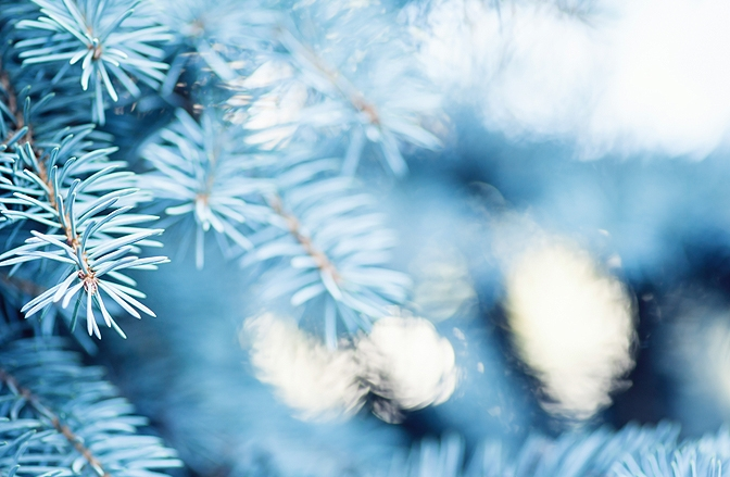 How To Be Well (And Stay Well) Over The Holiday Season