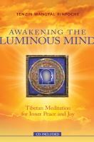 Awakening the Luminous Mind